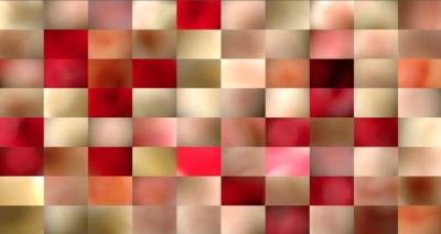KaTa_Roses_130x240cm_Fine-Art-Print, Diasec face